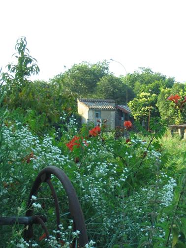Brocante Garden