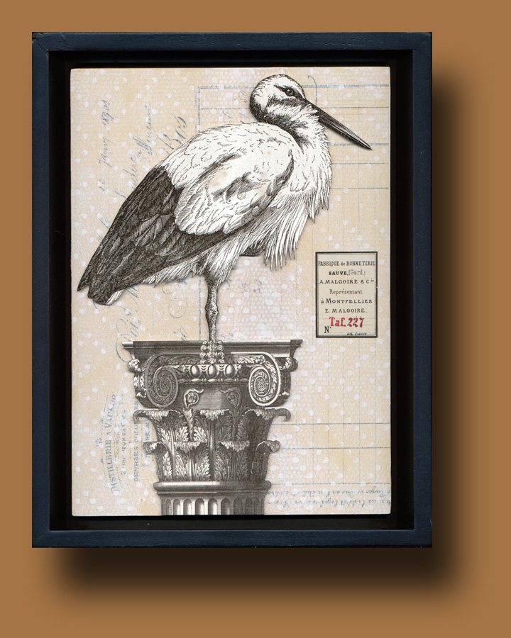 Oiseau Shadow Box 1
