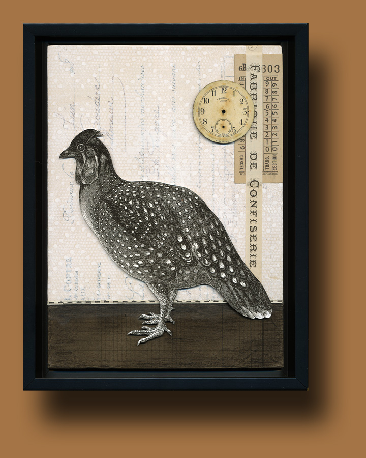 Oiseau Shadow Box 2