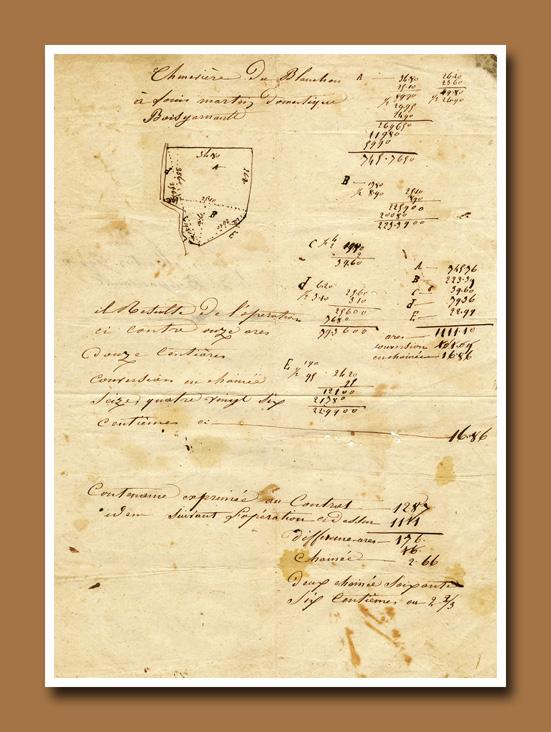 Antiq Script 11