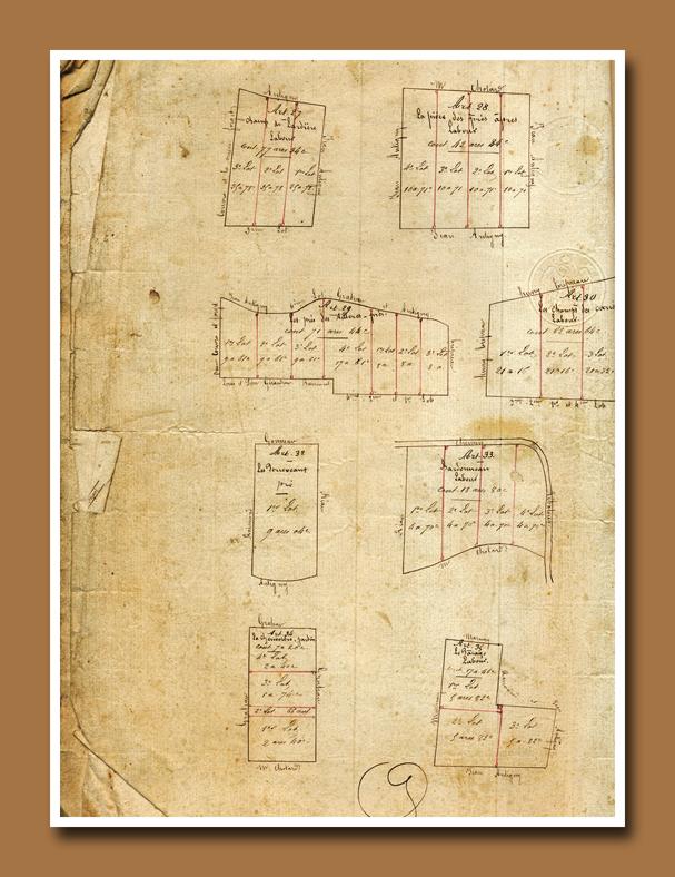 Antiq Script 14
