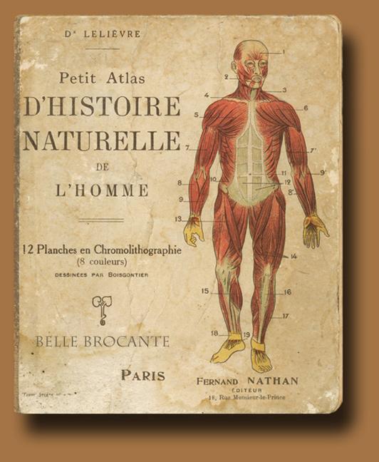 Histoire Naturelle 1_edited-1