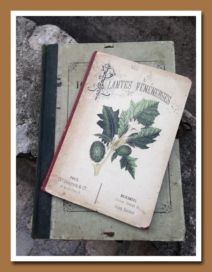 Plantes Venemeuses