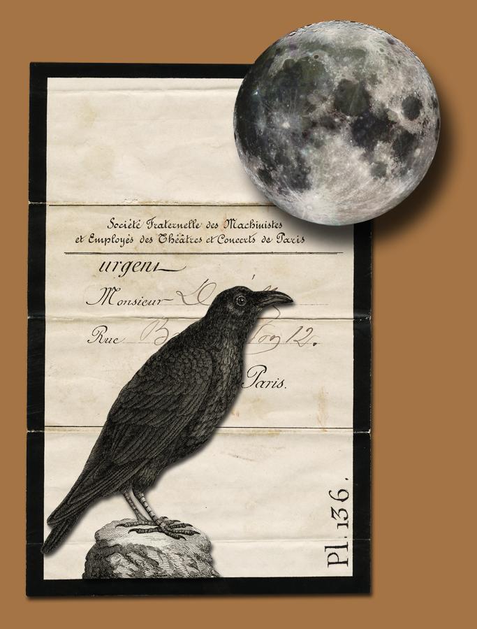 Crow Death Notice