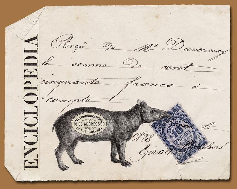 Tapir Enciclopedia